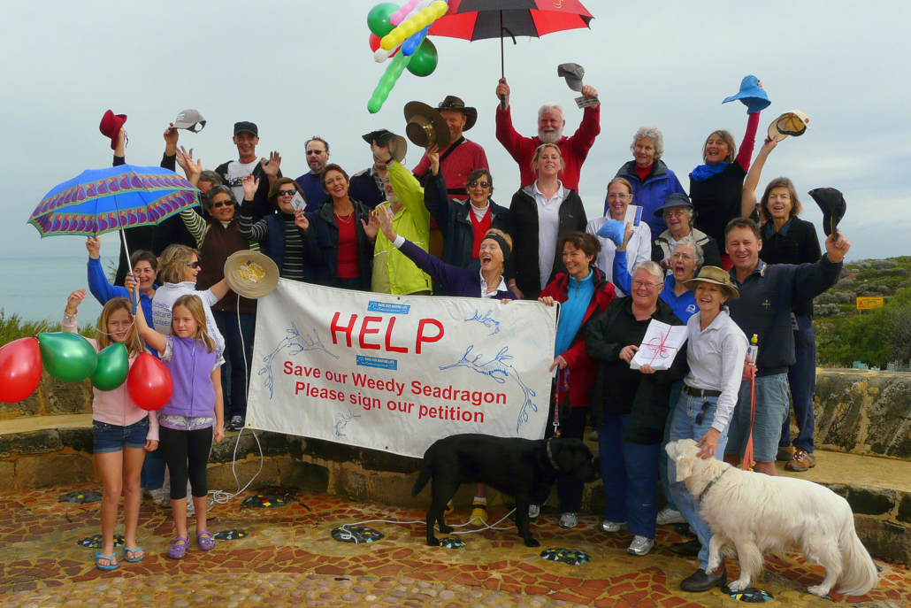 Weedy sea dragon campaigners