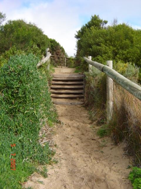Georgette steps 2007