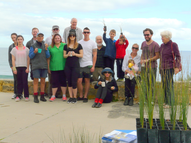 Last planting day at Napier St dunes – whoopee!