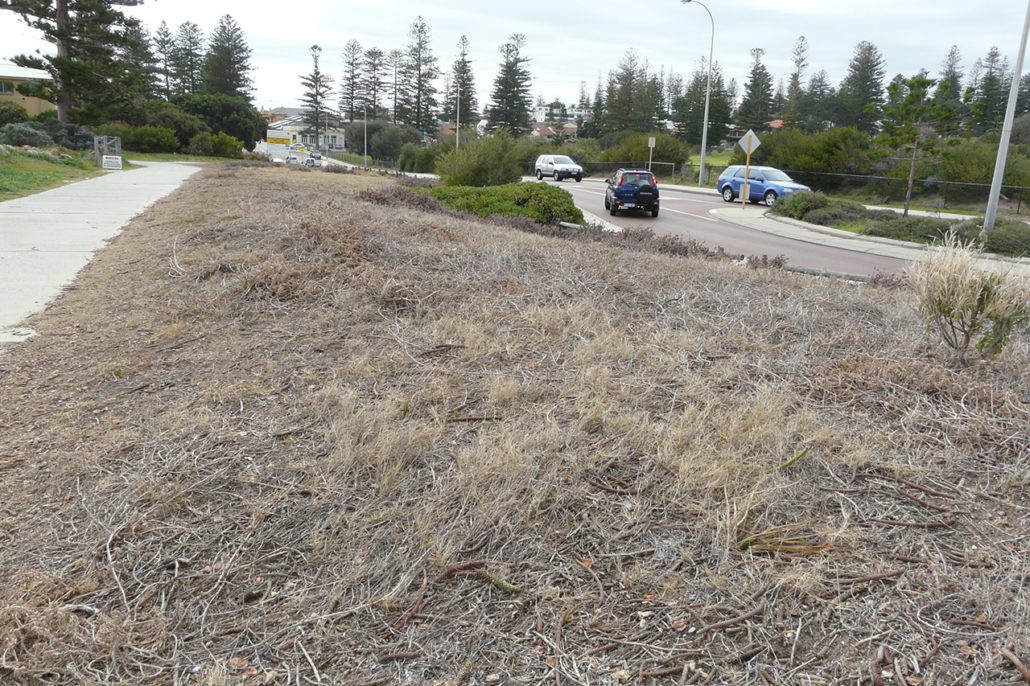 'Before' Mudurup Synergy project – verge section