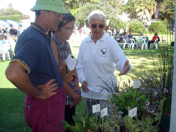 Frauke advising on plants