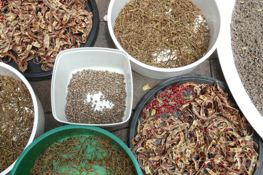 Seed collection