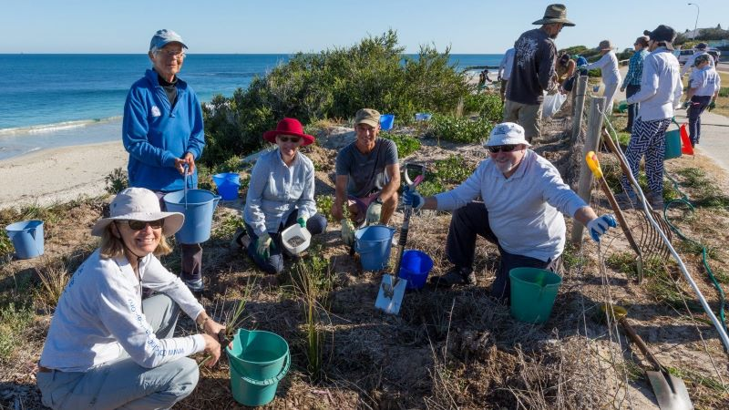 Sydney Street 2017 Cottesloe Coastcare volunteers