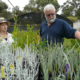 Mike and Ayesha (Apace Nursery) with our plants