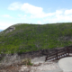 Grunters October-2012, courtesy Genny Broadhurst